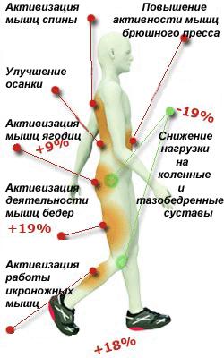 какие мышцы работают при ходьбе фото извлечь